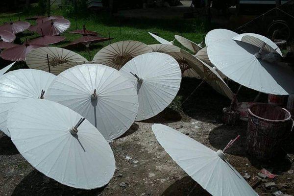 Umbrella 3